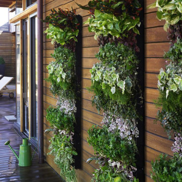 living-wall-large-vertical-garden-3