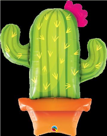 kaktus balon