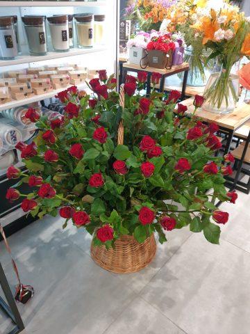 kosz róż sfera zieleni