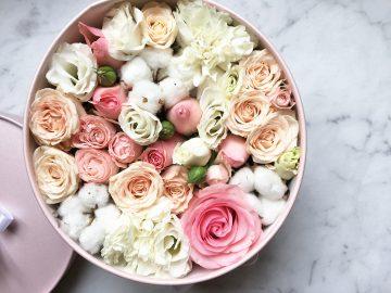 sfera zieleni flowerbox makaroniki